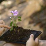 Environnement : les technologies du numérique offrent des solutions