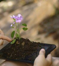 numérique-linky-environnement