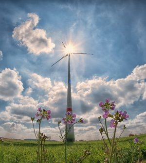 énergies renouvelables, Occitanie, 2050