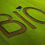Comment Biocoop veut démocratiser encore un peu plus le Bio
