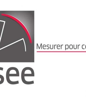 Croissance française, Insee