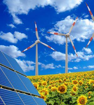 ENR, électricité, France