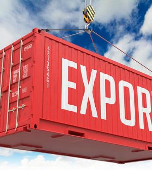Export, Aides, France