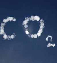 taxe carbone, Gilets jaunes, France