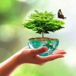 Ce que Macron propose pour l'écologie et la biodiversité